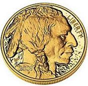 2009 Gold Buffalo
